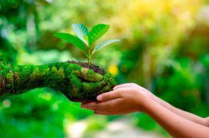 Beneficios para el medio ambiente