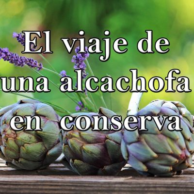 el viaje de una alcachofa en conserva